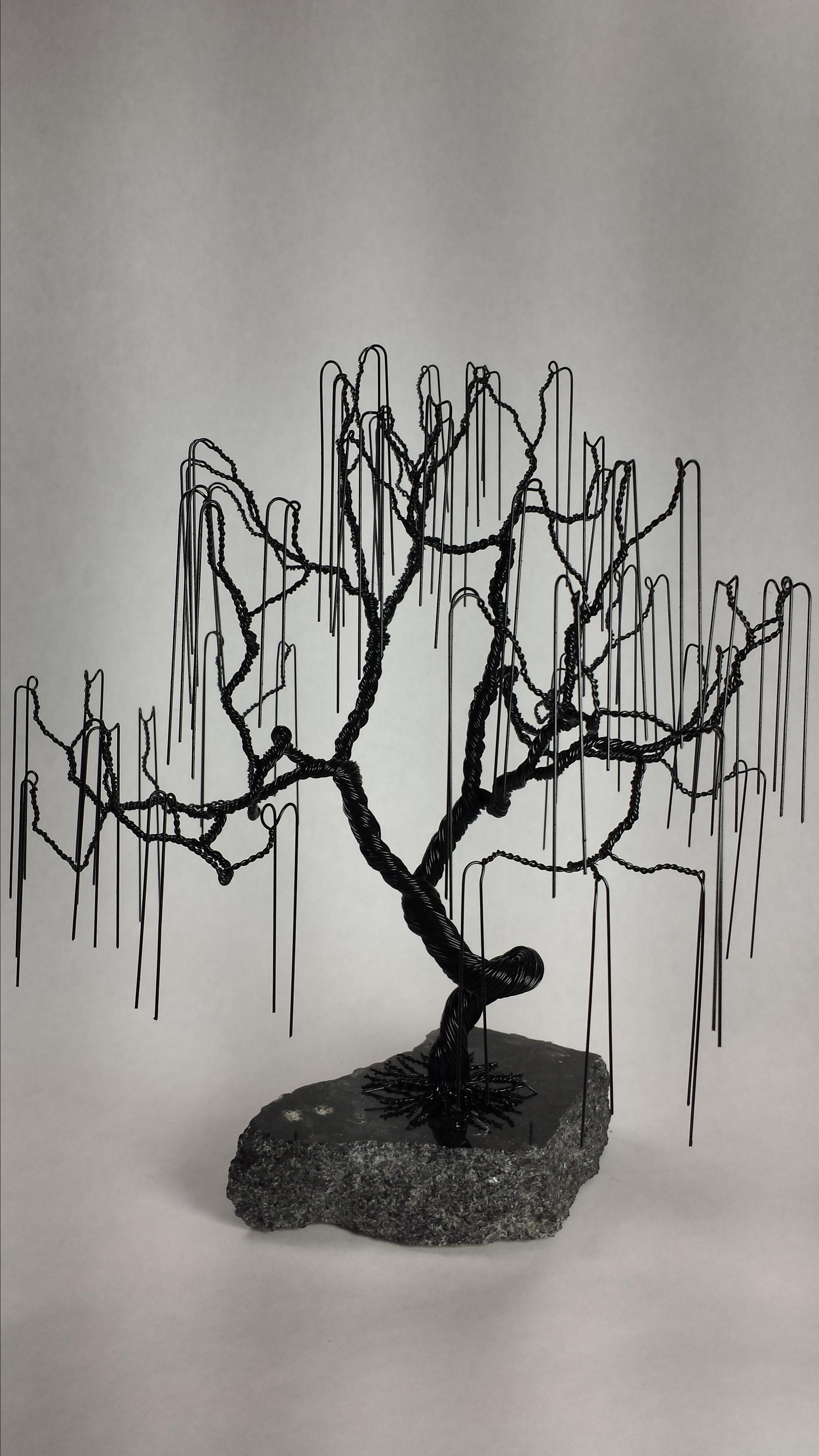 Fullsize Of Weeping Willow Bonsai