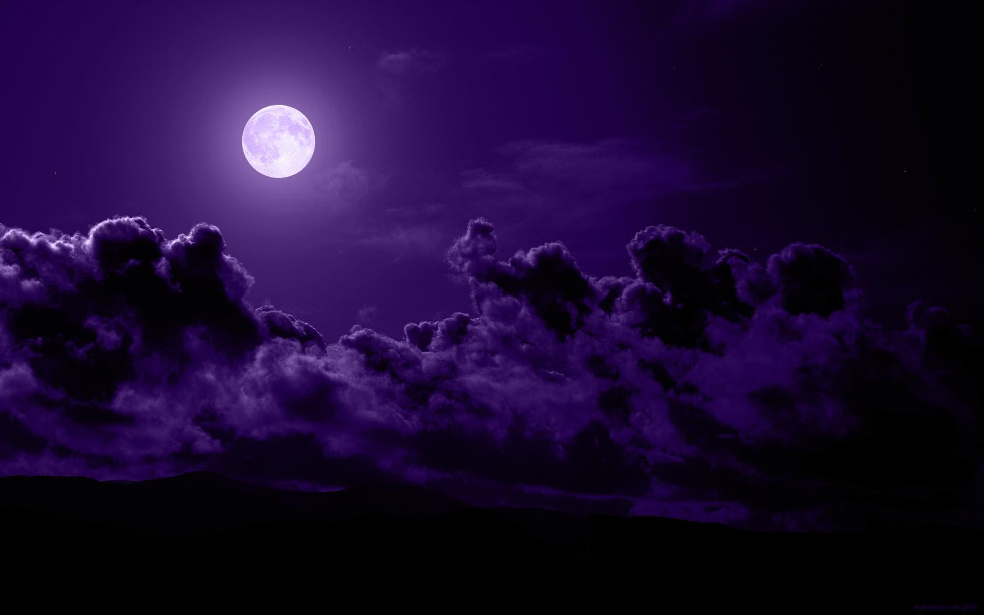 210+ Amazing Purple Backgrounds