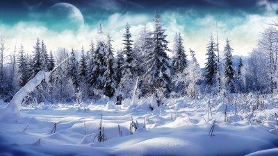27+ Snow Backgrounds | Wallpapers | Design Trends - Premium PSD, Vector Downloads