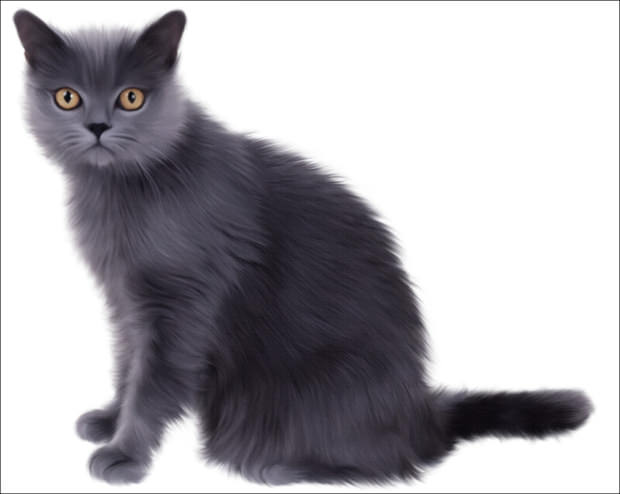 Cute Pink Cat Wallpapers 20 Cool Collection Of Cat Cliparts Images Pictures