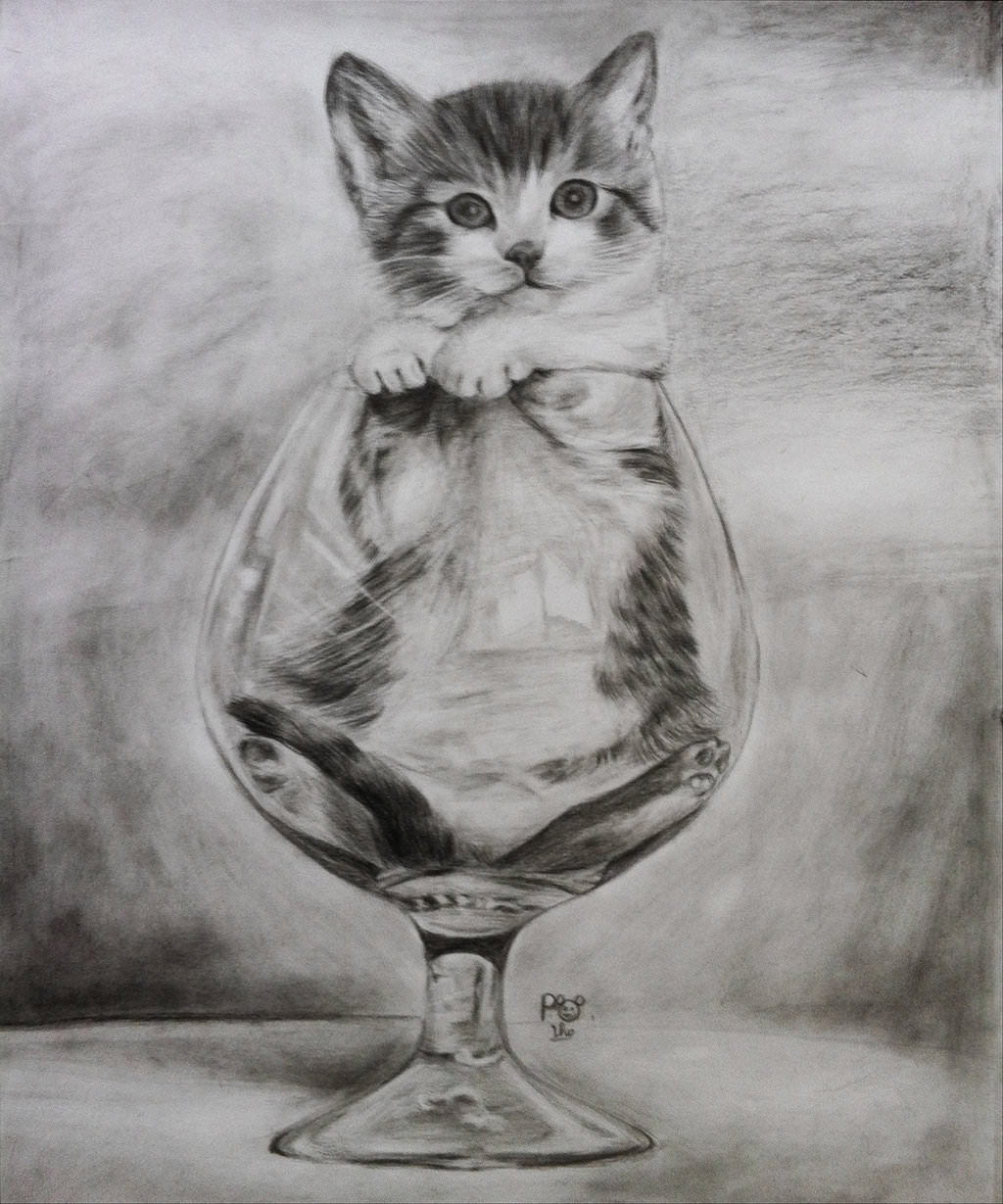 Cute Cats And Kittens Wallpaper Hd Cat Themes 19 Cat Drawings Art Ideas Sketches Design Trends