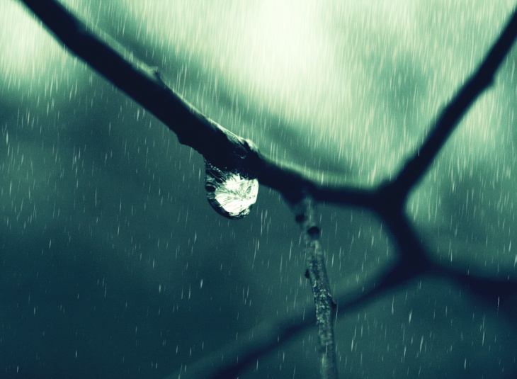 Drop Of Water Falling From A Leaf Wallpaper 21 Rain Wallpapers Backgrounds Images Pictures