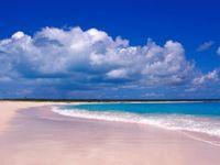 gambar pantai pink