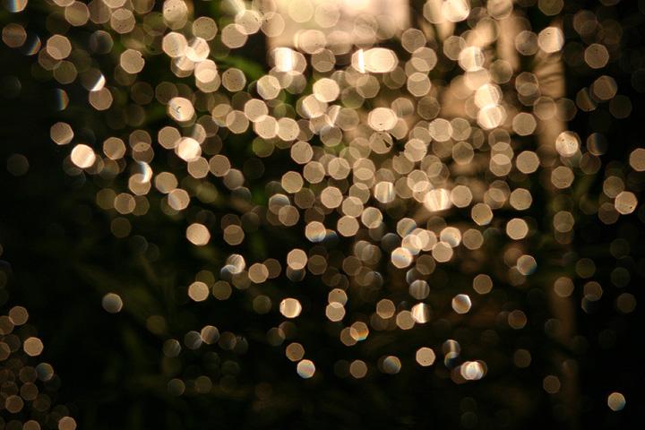 Light Effect Hd Wallpaper Light Bokeh By Sjcarter Dpchallenge