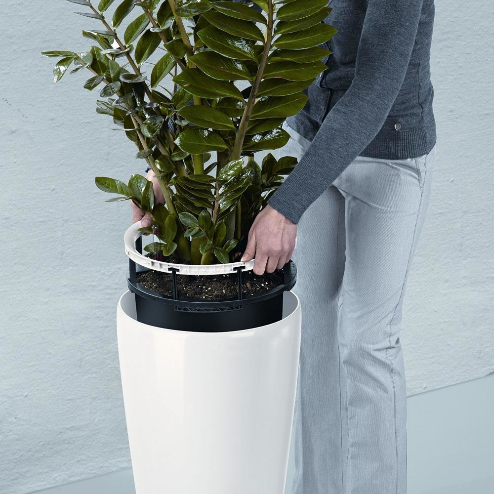 Lechuza Shop Rondo 32 Self Watering Planter By Lechuza By Lumens Dwell