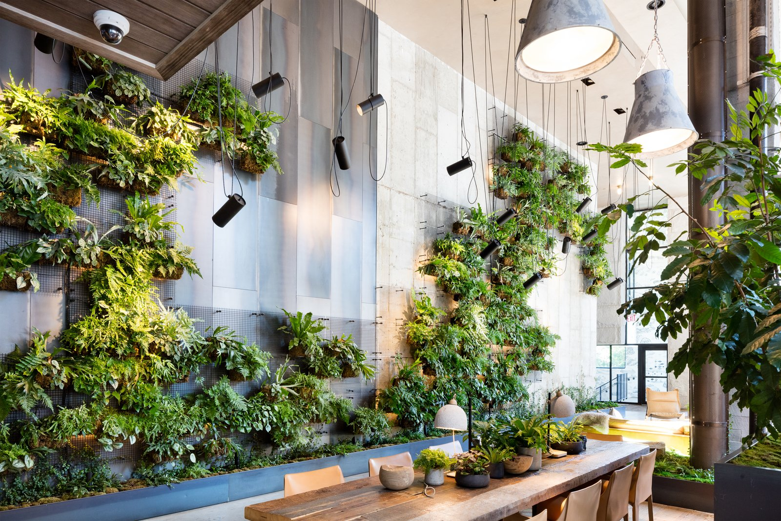 Green Living Living Green Walls 101 Their Benefits And How They Re Made