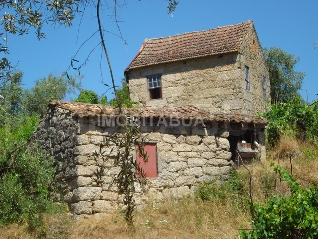 Farm With House In Granite To Rebuild In Carregal Do Sal