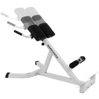 ADJUSTABLE BACK HYPEREXTENSION GYM BENCH ROMAN CHAIR ...
