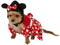 "Minnie Mouse Pet Dog Costume | Letter ""D"" Costumes 