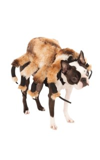 Giant Spider Dog Costume