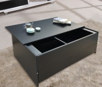 FoxHunter Slide Top coffee Table Trunk With Storage Box ...
