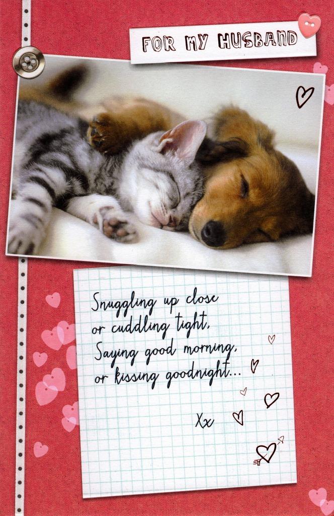 For My Husband Cat  Dog Valentine\u0027s Day Card Cards Love Kates