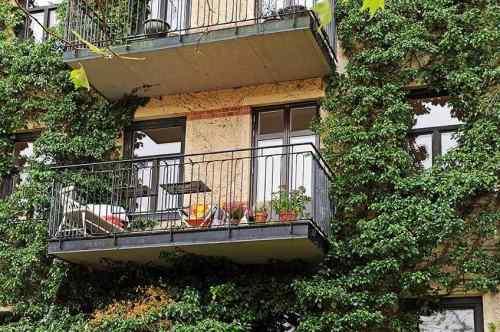 Balcón rodeado de verde