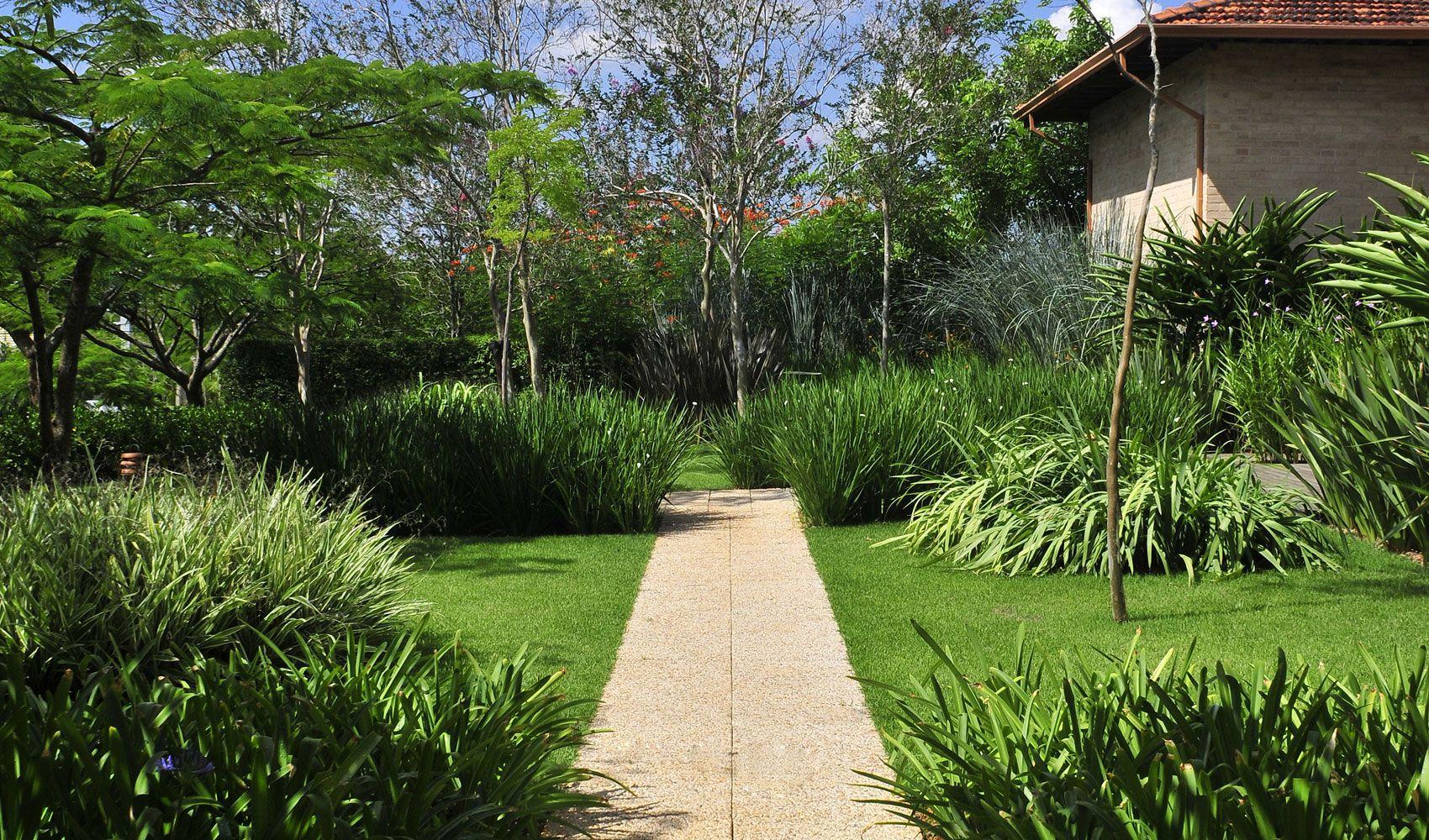 Dise o de exteriores jardines modernos y tropicales for Diseno de jardin moderno