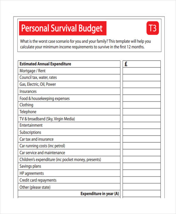 14+ Personal Budget Examples  Samples - example personal budget