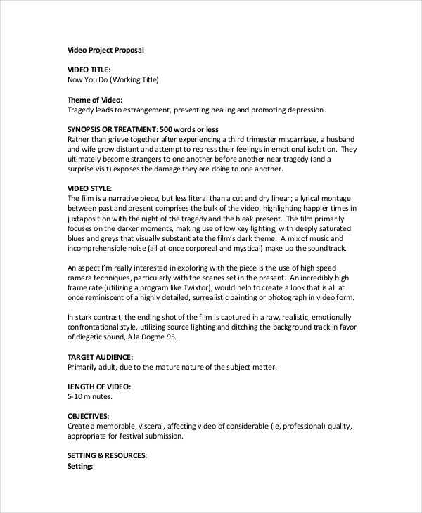 44+ Project Proposal Examples - PDF, Word - professional project proposal