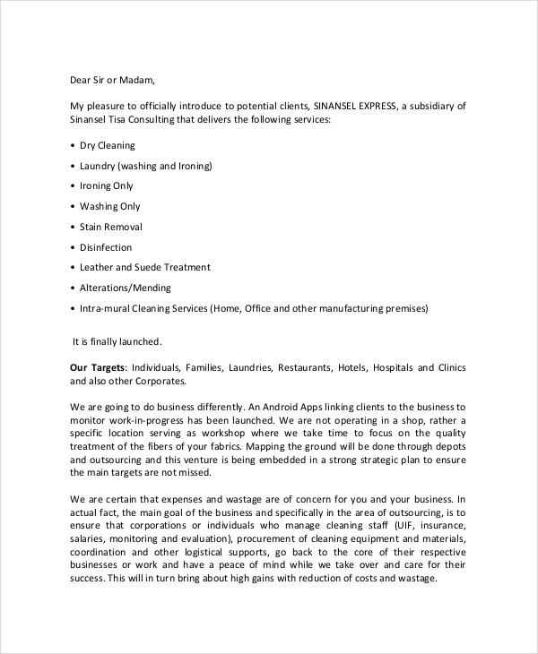 21+ Business Proposal Letter Examples - PDF, DOC - it services proposal