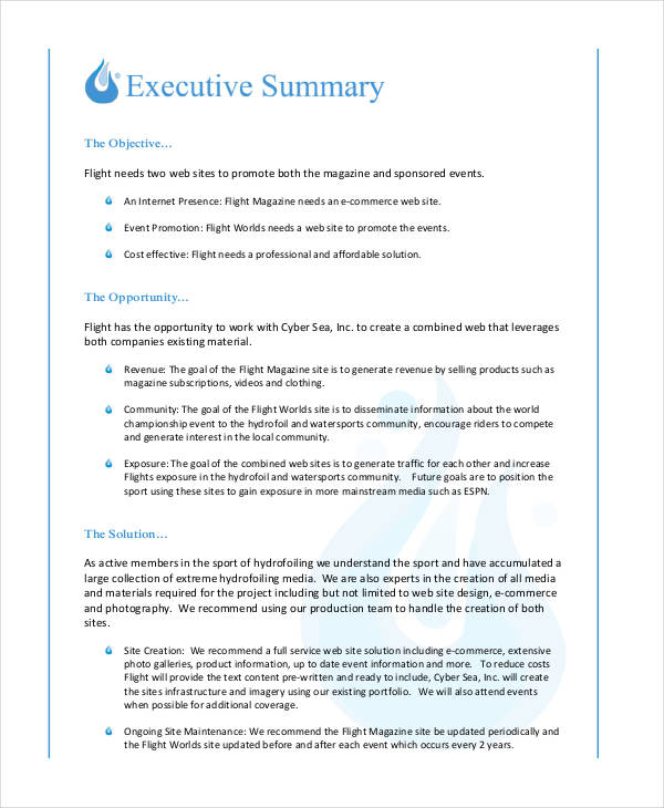 Executive Summary Proposal Example Node2003 Cvresumeasprovider