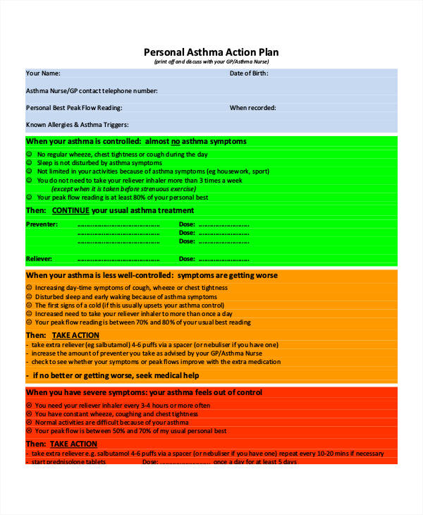 52+ Action Plan Examples - PDF, Word