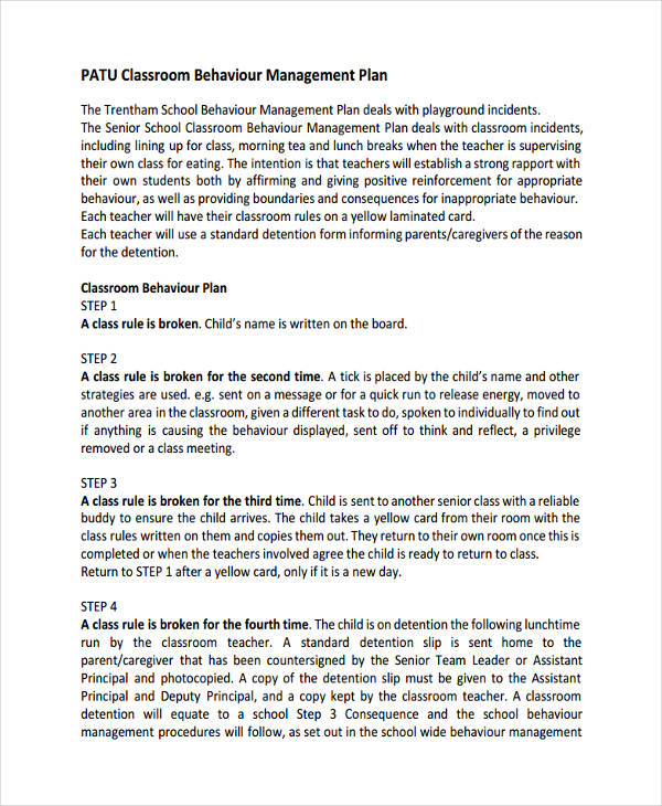 47+ Management Plan Examples - clroom management plan template