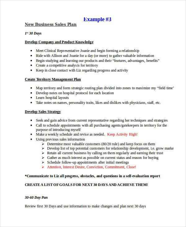 25+ Sales Plan Examples - sales plan example