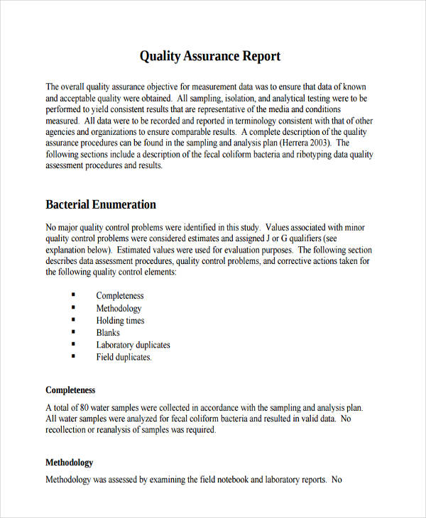 10+ Quality Report Examples, Samples