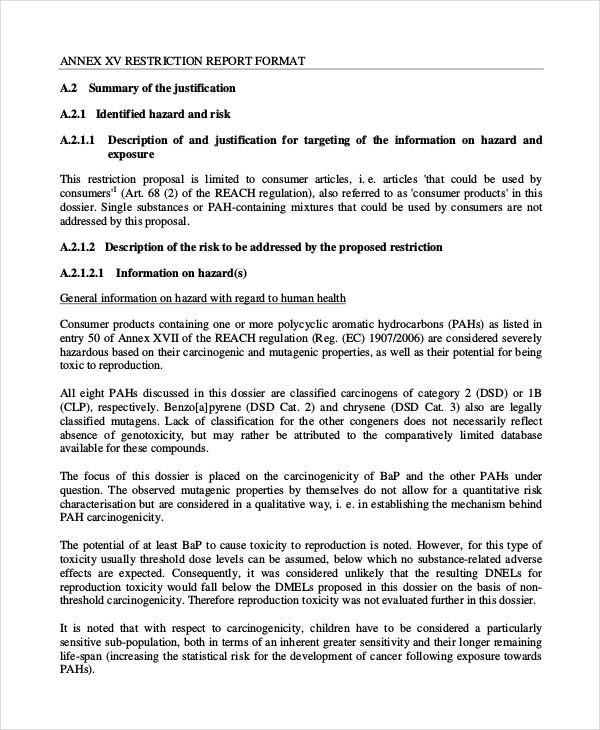 56+ Proposal Examples - PDF