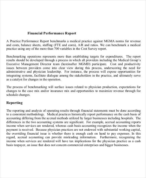 8+ Performance Report Examples - PDF, DOC Examples