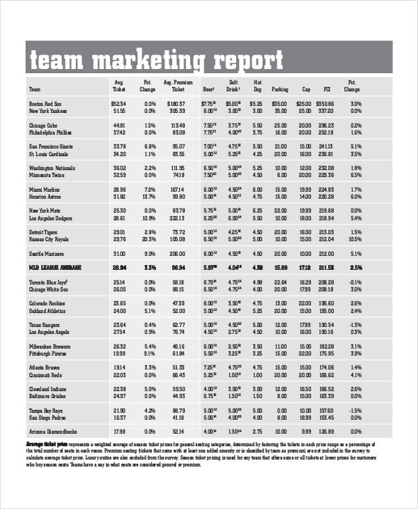 10+ Marketing Report Examples - PDF, Word, Pages - marketing report sample