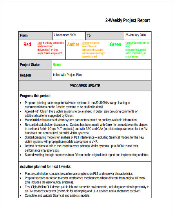 5+ Project Report Examples, Samples - project report format
