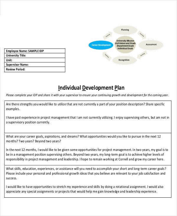 10+ Individual Development Plan Examples  Samples - PDF, Word - development plan template for employees