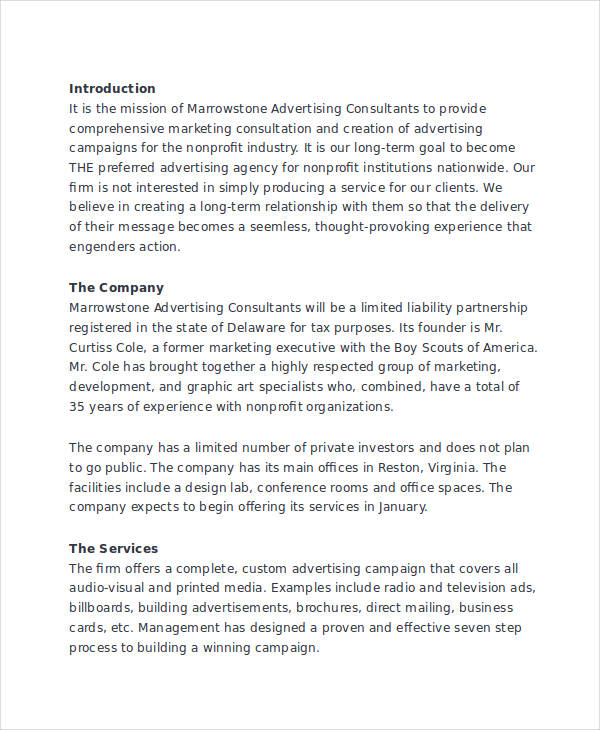 6+ Advertising Plan Examples, Samples - advertising plan