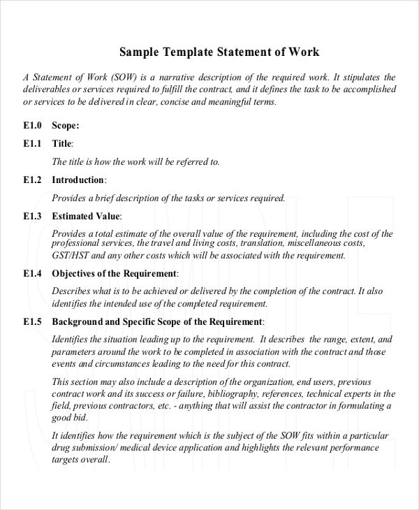 9+ Work Statement Examples , Samples