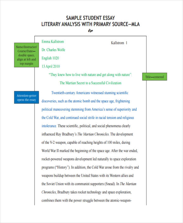 6+ Literary Essay Examples, Samples Examples