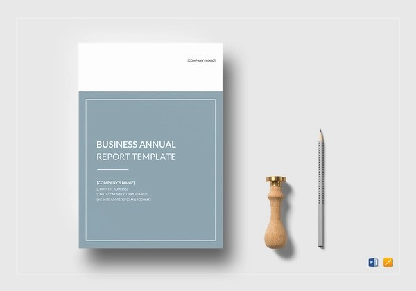 17+ Business Report Examples - PDF, Word - company report template