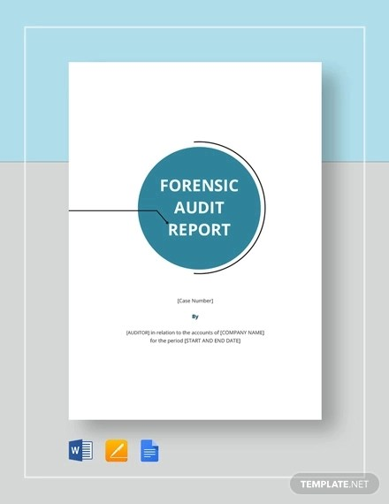 15+ Audit Report Examples - PDF, DOC, Pages Examples