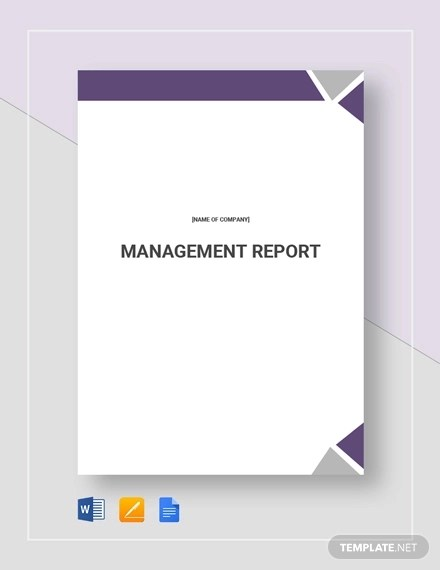 25 + Management Report Examples - PDF, Word, Apple Pages Examples