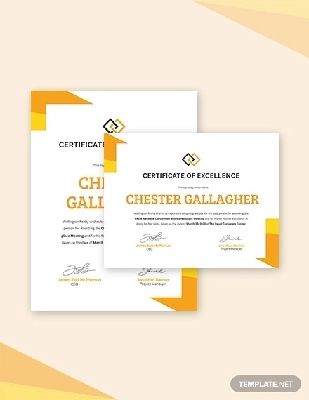 26+ Certification Templates Word, AI, PSD Examples  Samples Examples