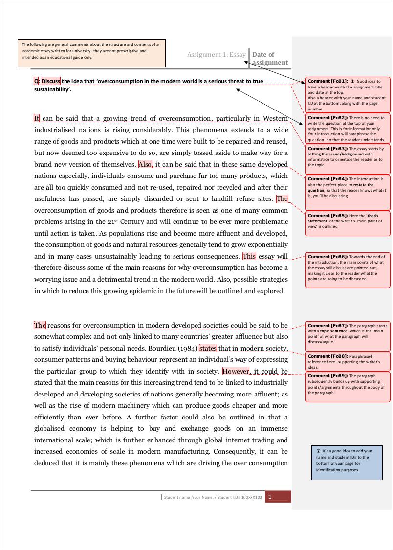 example academic essay