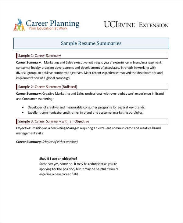 9+ Career Summary Examples - PDF - resume summary format