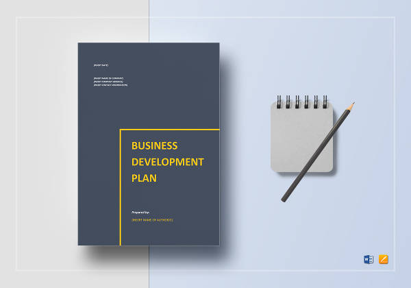 10+ Business Development Strategy Plan Examples - PDF, Word
