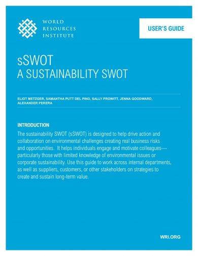 10+ Business SWOT Analysis Examples - PDF, Word Examples