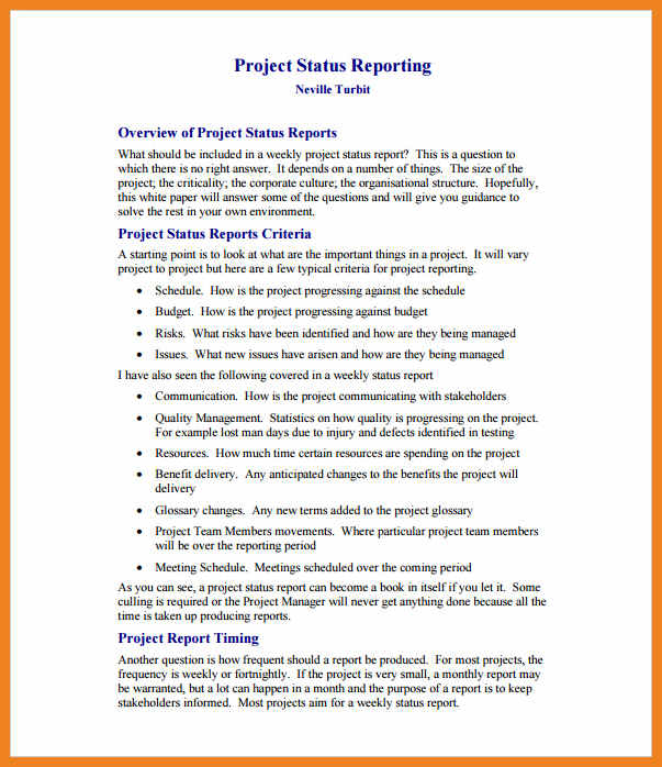 business project report pdf