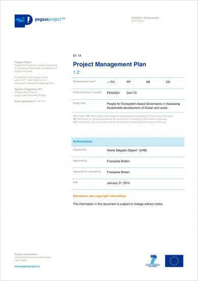 12+ Comprehensive Project Plan Examples - PDF Examples