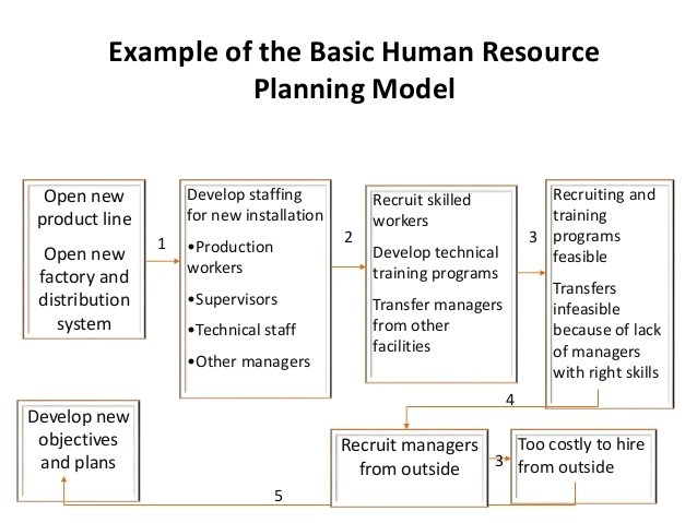 9+ Human Capital Strategic Plan Examples - PDF