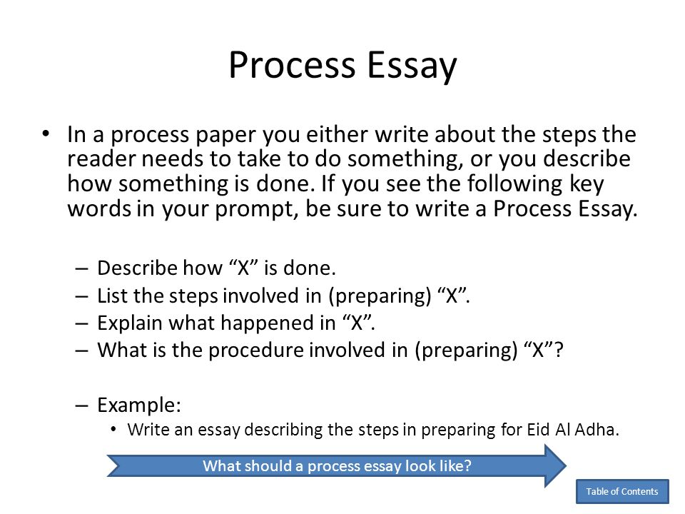 19+ Examples of Process Essays - PDF - process essays examples