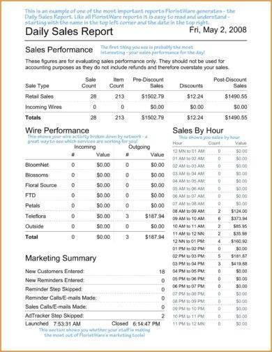 13+ Daily Sales Report Examples - PDF, Word