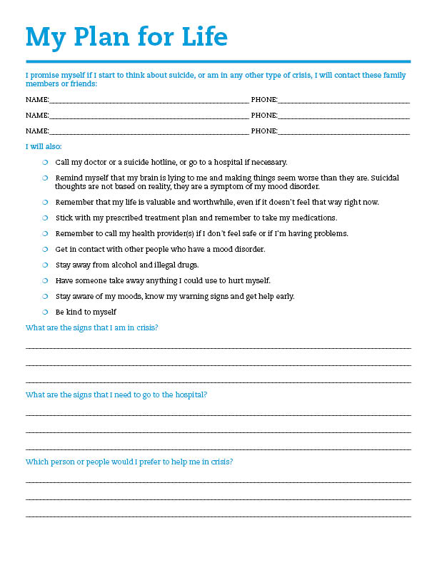 9+ Wellness Recovery Action Plan Template  Examples - PDF - action plan in pdf