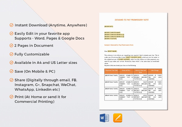 12+ Promissory Note Examples - PDF, Word, Apple Pages