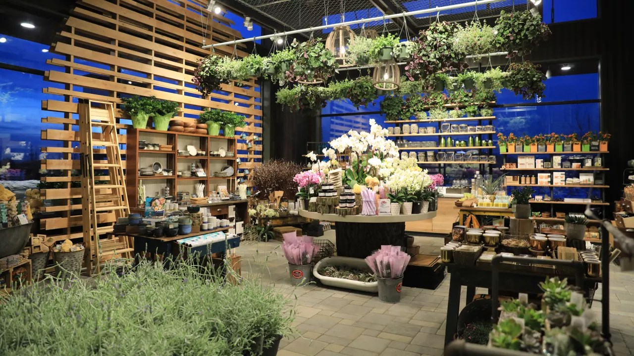 Shop Home Whole Foods Launches A Wellness Inspired Home Goods Shop
